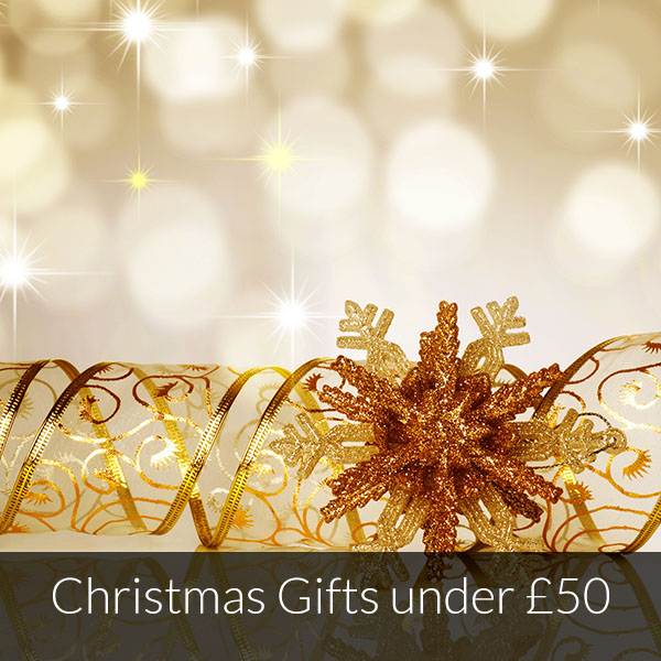 Christmas 2015 Gifts Under 50 Luxgifts